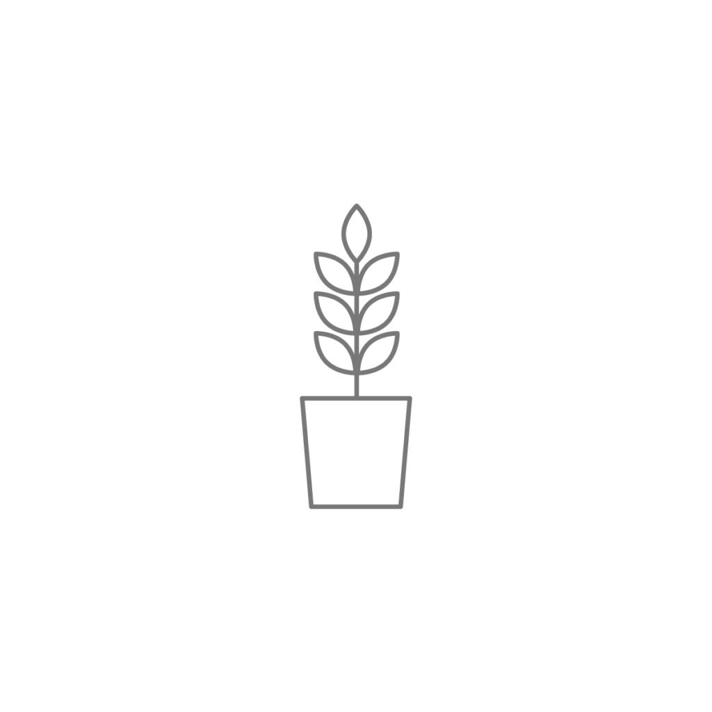 plant-large